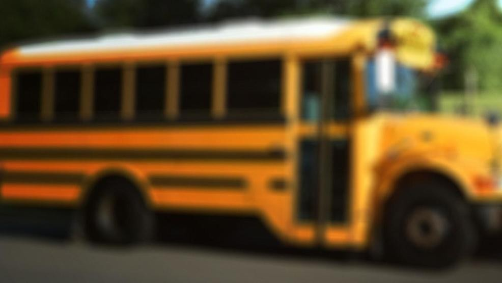 Kentucky school bus driver charged with DUI after wreck | WCHS
