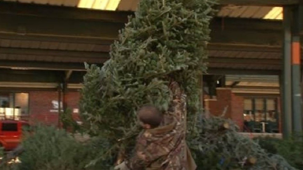 Christmas Tree Disposal.Christmas Tree Disposal Locations Offered In Charleston