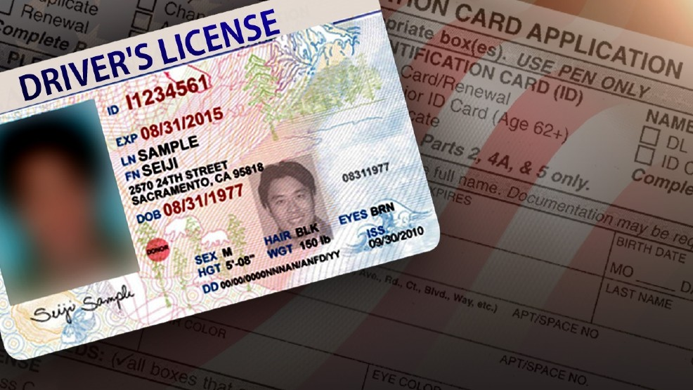kentucky drivers license vision requirements