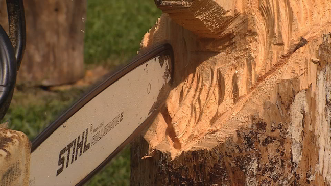 Traveling wv: chainsaw carver wchs