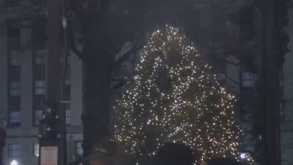 Capitol Christmas Tree.West Virginia Christmas Trees Set To Go Up At Capitol Wchs